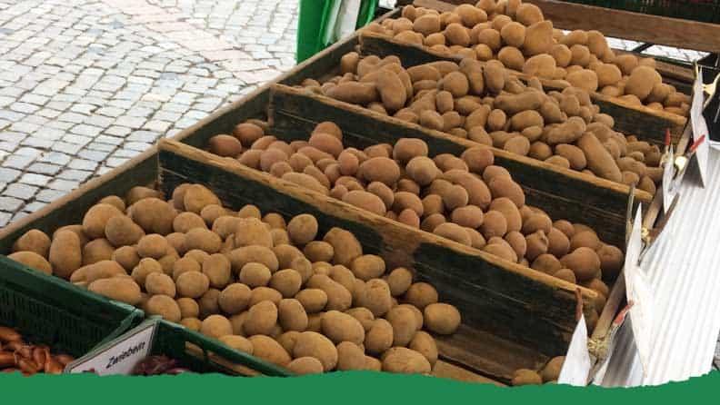 Kartoffeln Hof Lueddeke